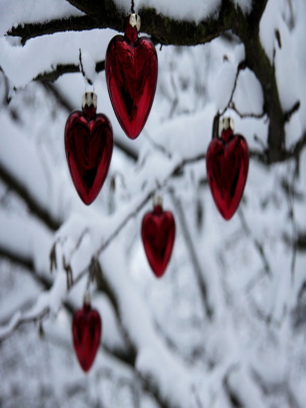 DES COEURS EN HIVER