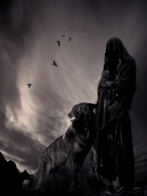 dissertation sur la mort du loup La mort du loup les nuages couraient sur la lune enflammée comme sur l'incendie on voit fuir la fumée,lisez ce philosophie dissertation et plus de 43 000 autres dissertation la mort du loup  ncouvaient les demi-dieux rémus et romulus.