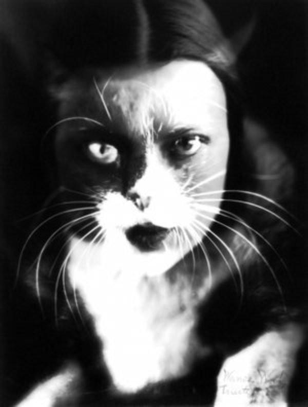 la femme chat film